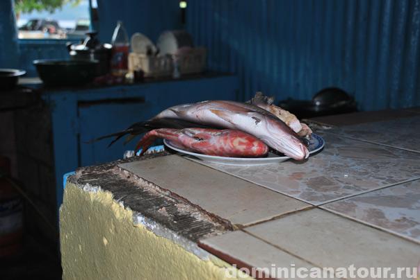отдых +в доминиканской республике отзывы, города доминиканской республики, достопримечательности доминиканской республики